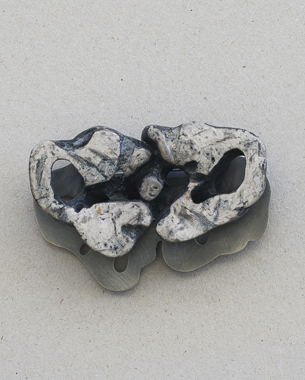 Brooch 2013, (9x6x2cm)